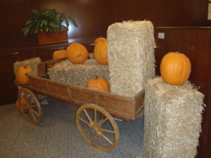 Pumpkin Patch Decor