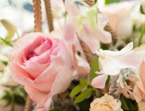 Blush pink floral