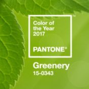 Pantone 2017 Color of the Year