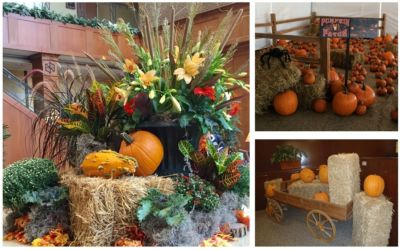 Halloween fall theme orange decor for corporate or social event